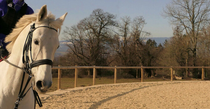 réussir la détente de son cheval