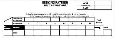 Les juges utilisent une feuille de score pour pouvoir noter chaque figure exécutée par le couple en piste.