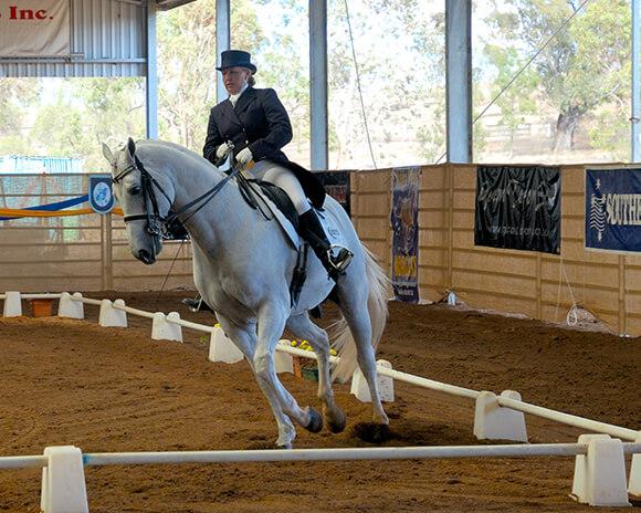 Des transitions rapprochées, notamment sur un cercle, vous permettront d'améliorer la réactivité de votre cheval