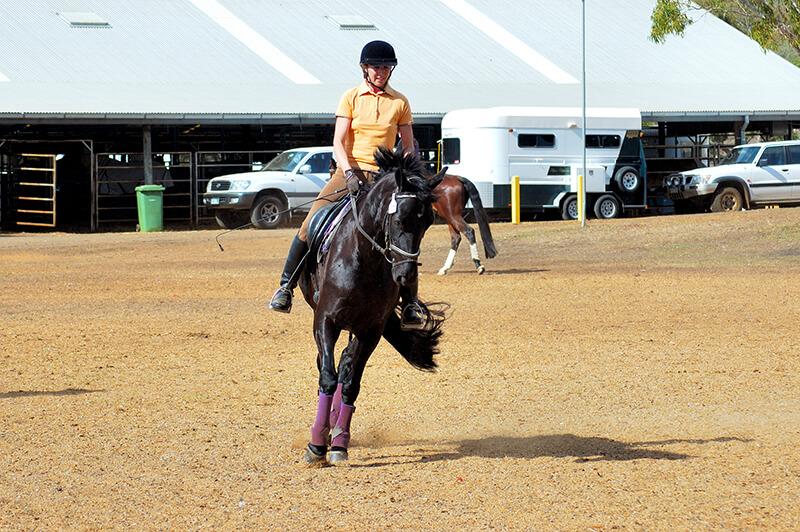 Après un mois de longe, de balades et de trottings, votre cheval sera suffisamment en forme pour reprendre le travail sérieusement.