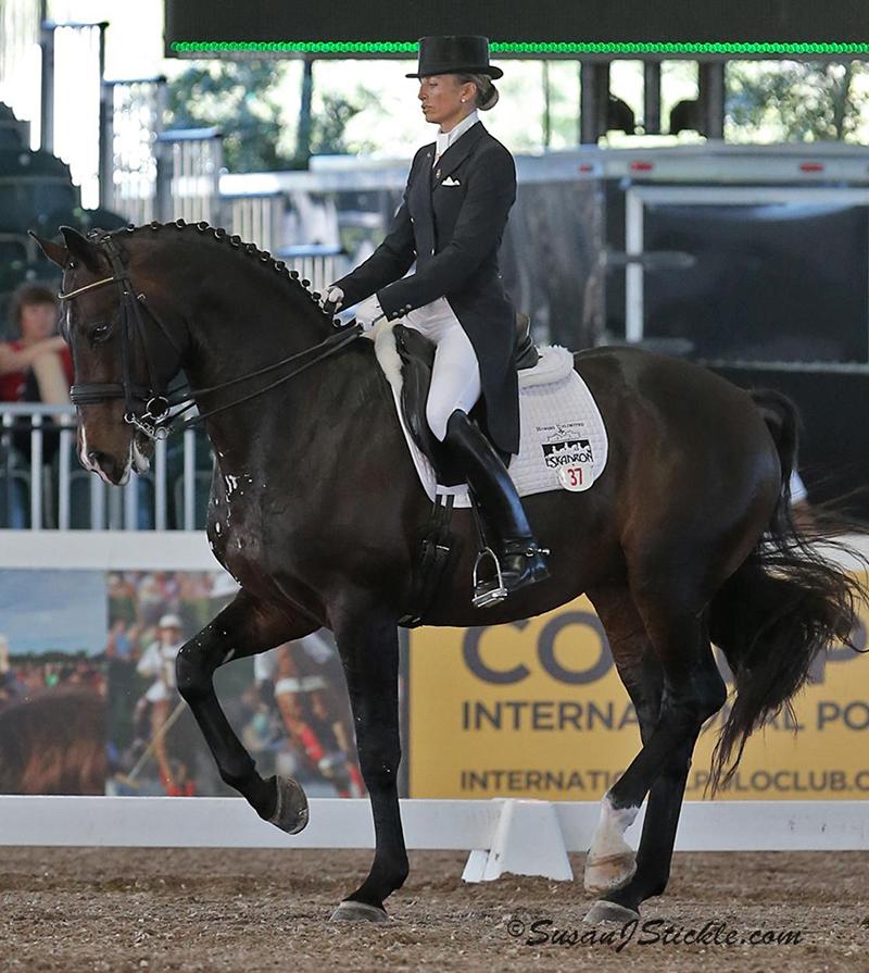 Rassembler votre cheval vous permettra de travailler l'équilibre vertical.