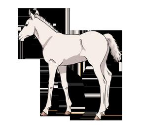 syndrome du poulain blanc