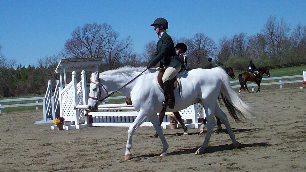 Si votre cheval manque d'impulsion et que vous vous penchez vers l'avant, vous risquez de vous retrouver avec un cheval dont l'équilibre se dégrade et tombe sur l'avant.