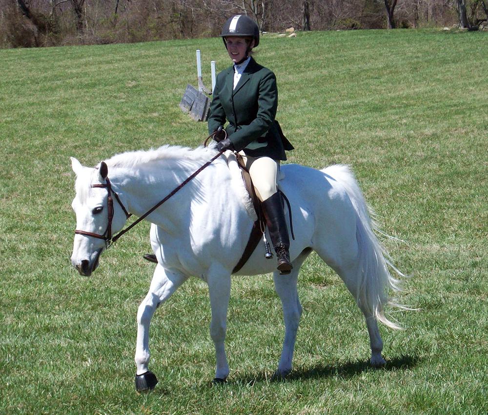 Attention aux confusions : ce cheval a l'air d'être blanc et pourtant il s'agit d'un cheval gris : observez attentivement la couleur de sa peau (visible notamment autour des yeux et sur le bout du nez) : elle est grise et non rose...