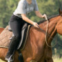 équitation éthologique