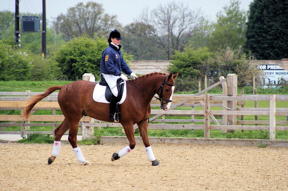 Votre cheval commence à trottiner ? Mettez-le dans un trot actif et enchaînez les exercices. Repassez au pas rênes longues dès qu'il se calme.