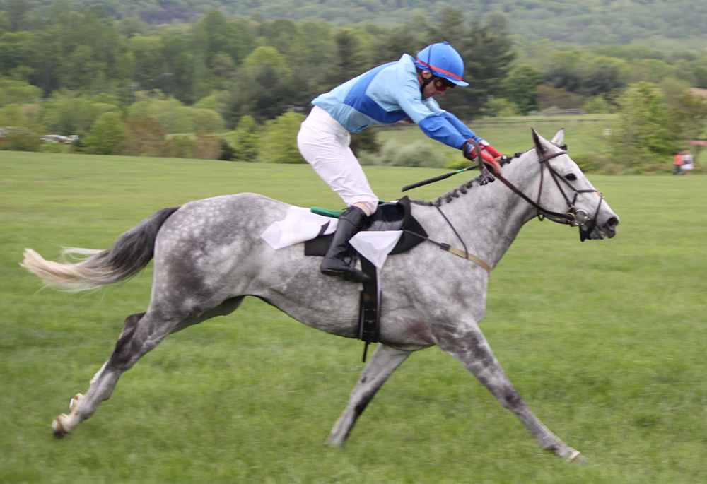 Plus un cheval fait preuve de vitesse et plus son équilibre sera porté vers l'avant.
