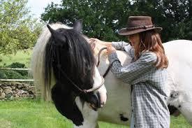 Lors d'une flexion d'encolure, amener la tête du cheval vers vous