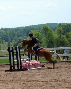 Beaucoup de chevaux se retiennent sur les obstacles voyants : la distance entre les obstacles sera alors plus longue.