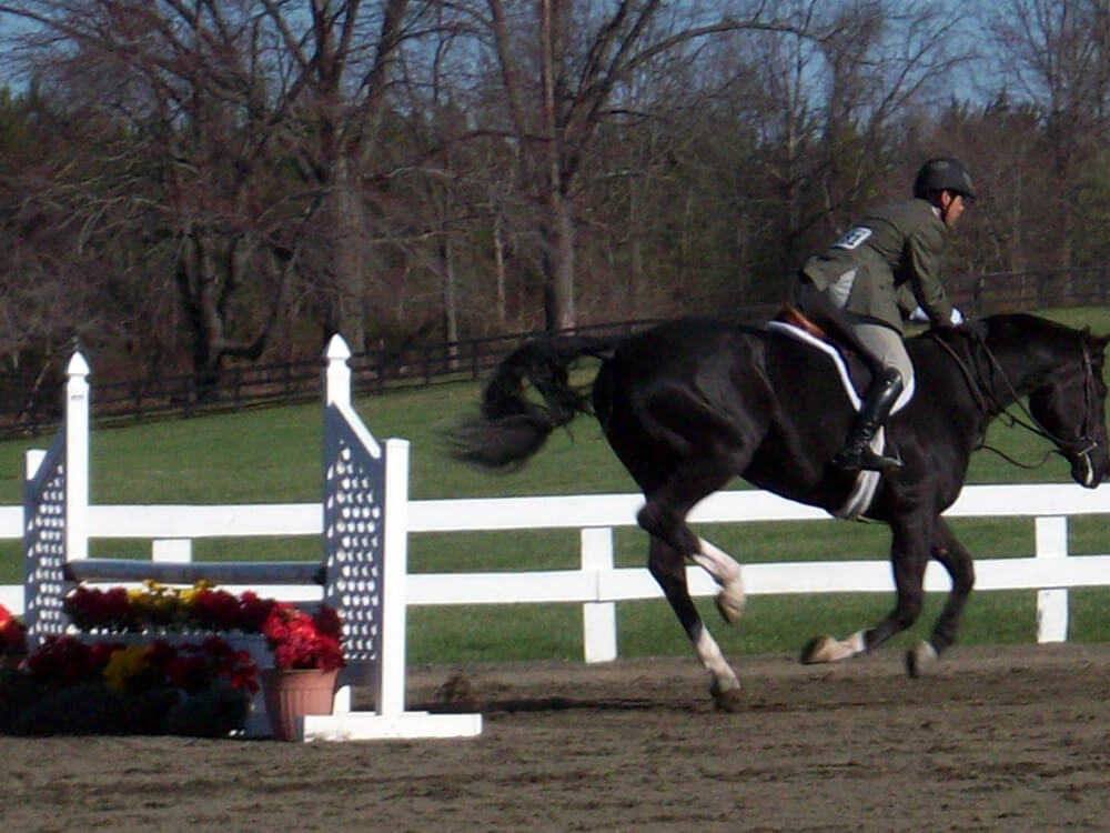 Si vous optez pour les foulées croissantes, faites particulièrement attention à l'équilibre de votre cheval ainsi qu'à la qualité de son galop.