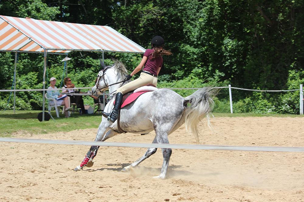 améliorer le galop du cheval
