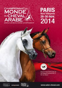 Le salon du cheval 43e dition - Salon du cheval albi ...