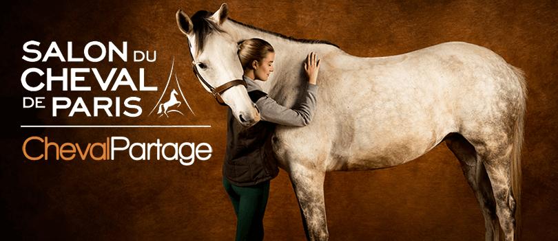 Comment bien s cher son cheval apr s le travail cheval partage - Salon du cheval 2014 paris ...