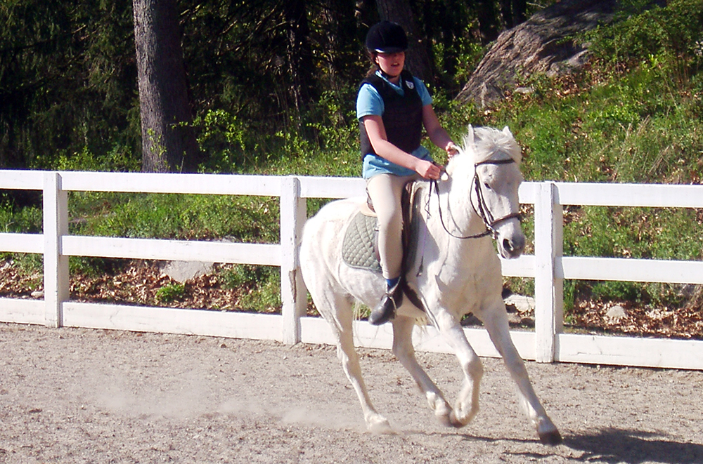 En mettant votre cheval au pair, vous acceptez qu'il puisse être monté par des cavaliers de tout niveau.