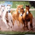 plaid-polaire-imprime-chevaux-hkm