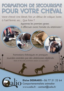 CALIO_affiche_SecourismeChevaux