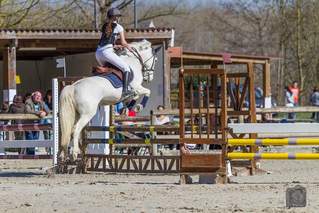 Les chevaux ont tendance à se rapprocher des obstacles voyants : s'il est dans une ligne, celle-ci pourrait vous paraître plus longue ! © B@rberousse