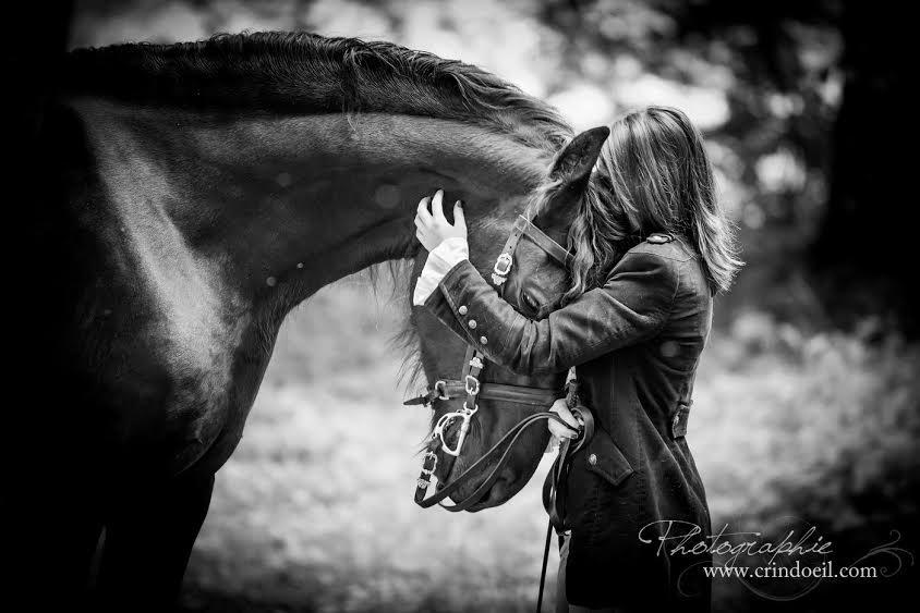 Super Photographier les chevaux : les conseils d'une professionnelle HI95