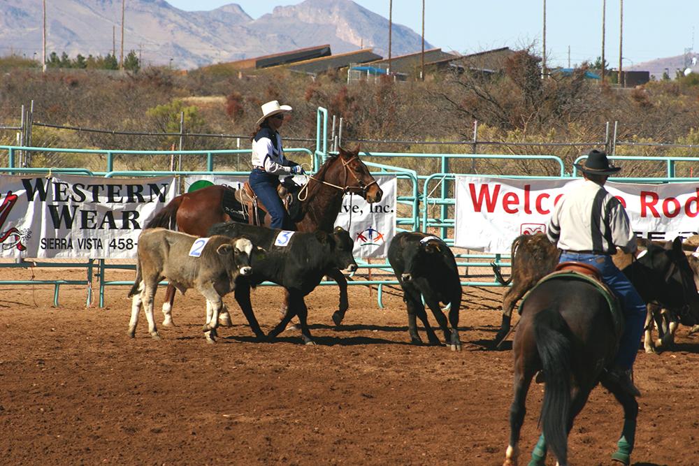 cutting western