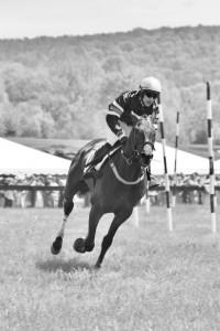 corriger la dissymétrie du cheval