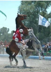 horseball polémique