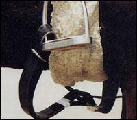 Horse ball : sangle de ramassage