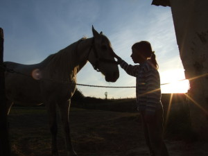 horse-with-child-1309586