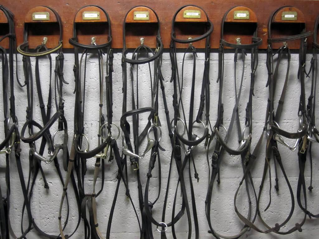 La sellerie personnelle : une installation quasi indispensable pour les cavaliers-propriétaires !