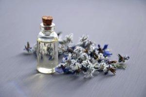 Médecines douces : élixir de fleurs