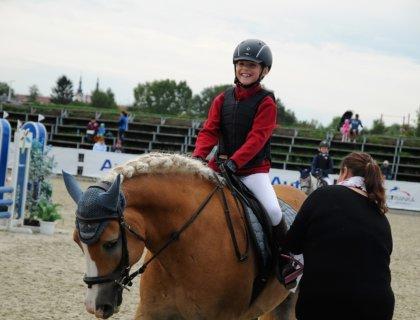 taille poney en compétition, image parAdéla Holubová de Pixabay