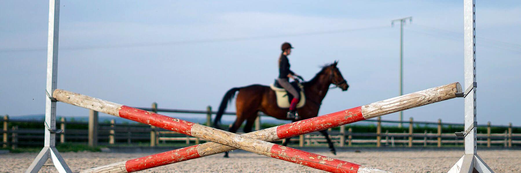 exercice du mois cheval équitation