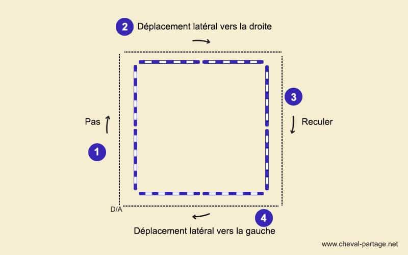 Schéma du déroulement de l'exercice du carré d'Andy Booth