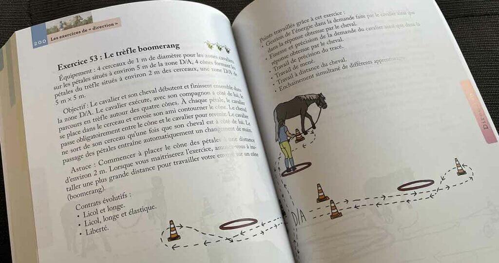 Extrait du livre 100 exercices pour jouer à pied avec son cheval - Progresser et devenir expert en Equifeel