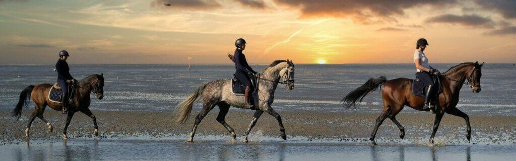Promenade à cheval au soleil couchant sur le bord de mer